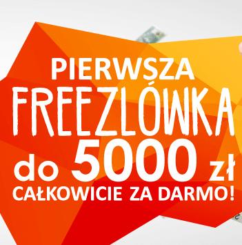 pożyczka 5000 zł